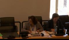 لجنة الأمم المتحدة للقضاء على التمييز العنصري تستعرض لبنان