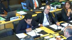 استعراض لجنة الأمم المتحدة للقضاء على التمييز العنصري لملف لبنان (اليوم الثاني)