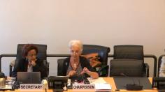 استعراض لجنة الأمم المتحدة للقضاء على التمييز العنصري لملف لبنان (اليوم الاول)